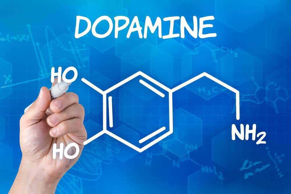 Structural formula for dopamine.