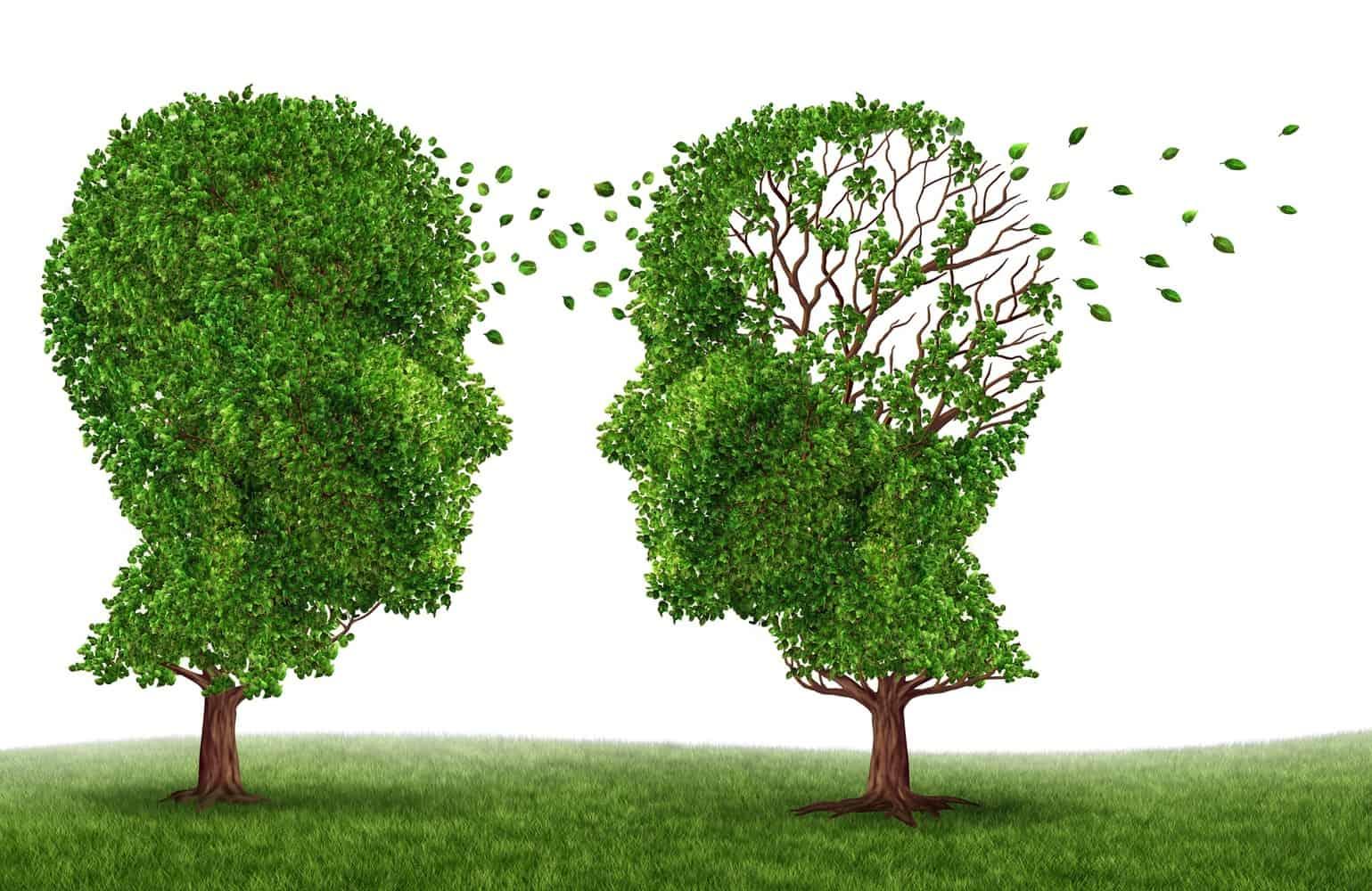 Head-shaped trees.