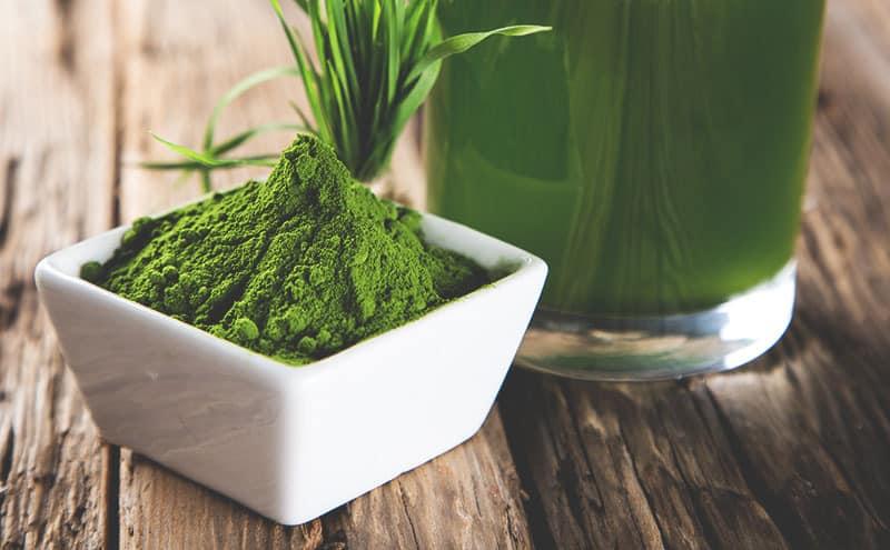 ¿Cuál es el Mejor Polvo Verde Superfood en 2021?